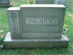 Anthony Paladino