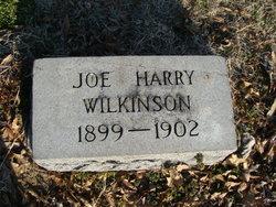 Joe Harry Wilkinson