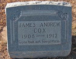 James Andrew Cox