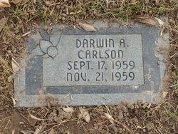 Darwin Allen Carlson