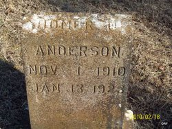 Homer D Anderson
