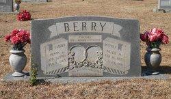 Nellie Mai <I>Johnson</I> Berry