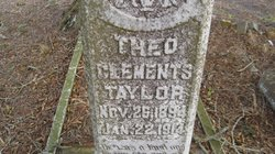 Theo Clements Taylor