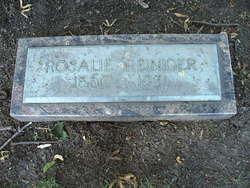 "Rosalie Eliza ""Rose"" <I>Reiniger</I> Willson"