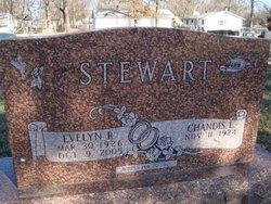 Evelyn R. Stewart