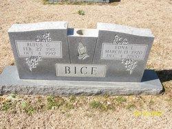 Edna L. Bice