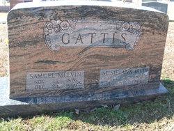 Susie Ann <I>Irvin</I> Gattis