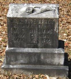 Joel Pope <I>Abney</I> Williams