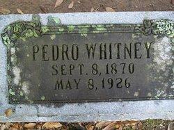 Pedro D. Whitney