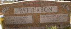 Sarah Mary Pauline <I>Spiller</I> Patterson