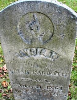 Lydia T Cardwell