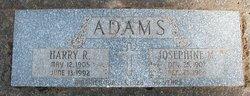 Harry Robert Adams