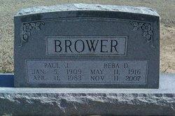 Paul J Brower