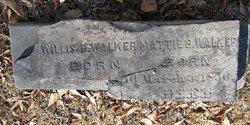 Mattie B <I>Williams</I> Walker