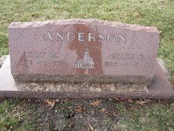Roy M Anderson