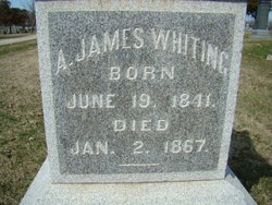 Ansel James Whiting
