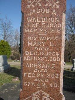 Jacob A Waldron