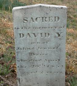 David Y Brice
