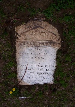 Margaret Louisa Ball