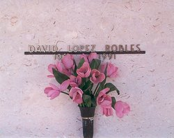 David Lopez Robles