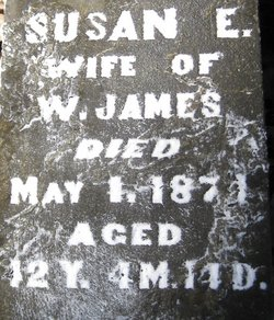 Susan E James
