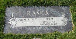Joan M <I>Snoddy</I> Raska