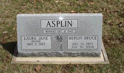 Merlin Bruce Asplin