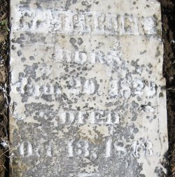 William Terhune