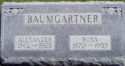 """Rosina """"Rosa"""" <I>Schneider</I> Baumgartner"""
