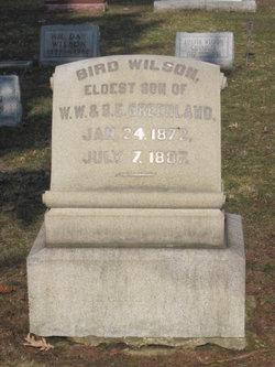 Bird Wilson Greenland