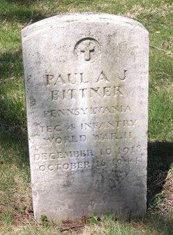 Paul A. J. Bittner