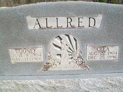 Alta Clea <I>Ledbetter</I> Allred