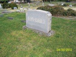 """Frances Swift """"Fannie S."""" <I>Blevins</I>"""