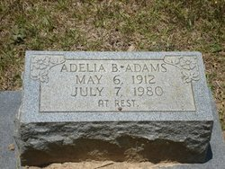 "Adelia B ""Delia"" <I>James</I> Adams"