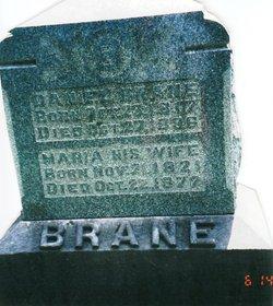 Daniel Beig Brane