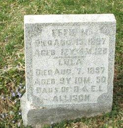 Effie M. Allison