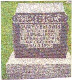 Carey Camel Baldwin