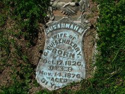 Susannah M. <I>Skaggs</I> Quisenberry