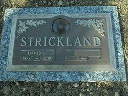 David Brian Strickland