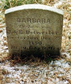 Barbara Detweiler