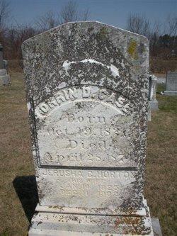 Jerusha Conklin <I>Horton</I> Case