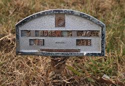 Andrew Jackson German