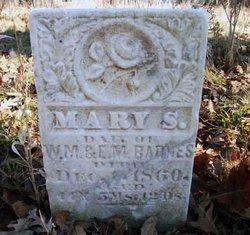Mary S Barnes