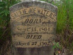 "Sarah Sallie ""Sallie Joe"" <I>Warters</I> Waters"