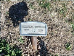 "Janet Mary ""Nettie"" <I>DeFoe</I> Steiner"