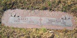 Albert S Anderson