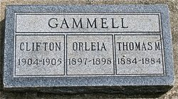 Thomas M Gammell