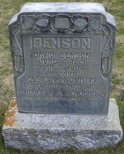 Elsa Ann <I>Curtis</I> Benson