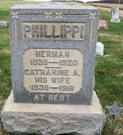 Herman Phillippi
