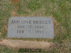 Anne <I>Love</I> Bridges